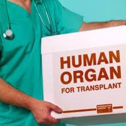 donare organe