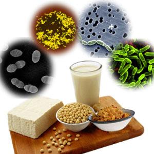 avantaje probiotice